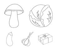 Cabbage white, mushroom forest, garlic useful, eggplant. Vegetables set collection icons in outline style vector symbol. Stock illustration Stock Photography