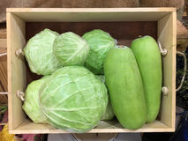 Cabbage and  Winter melon Royalty Free Stock Photo