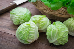 Cabbage on wooden table Stock Image