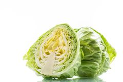 Cabbage young green Royalty Free Stock Photo