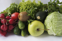 Cabbage, zucchini, cucumbers, radish, tomatoes, kiwi, spinach, parsley, mints and lettuce. Royalty Free Stock Photos