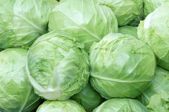 Cabbages. The background of green cabbages Royalty Free Stock Images