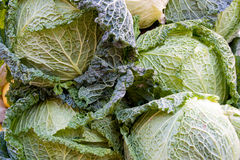 Cabbages. A pile of cabbages at the market Stock Photography