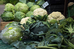 Cabbages, cauliflowers and broccoli at market. Royalty Free Stock Images