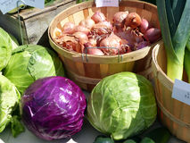 Cabbages and shallots. A the farmers market royalty free stock image