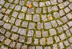 Cabblestone trottoar Royaltyfri Bild