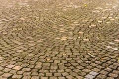 Cabblestone trottoar i höst Royaltyfria Bilder