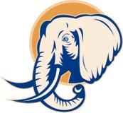 Cabeça africana do elefante de touro ilustração royalty free