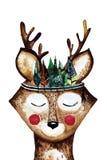 Cabeça bonita dos cervos da aquarela com faixa das penas Imagens de Stock