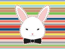 Cabeça bonito do coelho Fotos de Stock Royalty Free