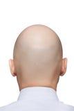 Cabeça calva do homem Foto de Stock Royalty Free