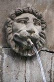 A cabeça cinzelada de um leão decora uma fonte (França) Imagem de Stock