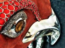 Cabeça colorida do papagaio Imagem de Stock Royalty Free