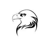 Cabeça da águia Imagens de Stock