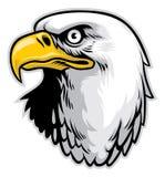 Cabeça da águia ilustração royalty free