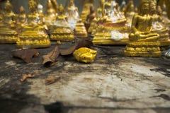 Cabeça da Buda Fotografia de Stock