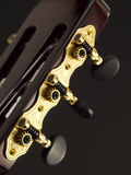 Cabeça da guitarra Foto de Stock Royalty Free