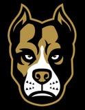 Cabeça da mascote do cão de Pitbull Imagem de Stock Royalty Free