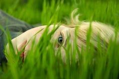 Cabeça da menina na grama Fotografia de Stock