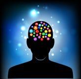 Cabeça da mente humana Fotografia de Stock