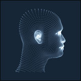 Cabeça da pessoa de uma grade 3d Modelo da cabeça humana Exploração da cara Ideia da cabeça humana projeto geométrico da cara 3D  Foto de Stock Royalty Free