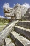 Cabeça da serpente, México Fotografia de Stock Royalty Free