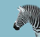 Cabeça da zebra ilustração do vetor