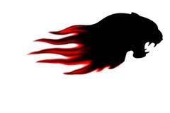 Cabeça das panteras com isolado da flama Fotos de Stock Royalty Free