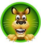 Cabeça de cão bonito dos desenhos animados isolada Imagem de Stock