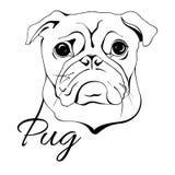 Cabeça de cão do Pug ilustração royalty free