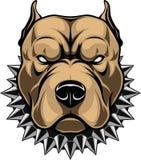 Cabeça de cão irritada ilustração do vetor