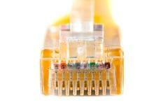 Cabeça de cabo na cabeça rj45, rede, RJ45, tomada foto de stock