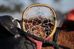 Cabeça de Cane Polocrosse Racquet Imagem de Stock Royalty Free