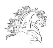 Cabeça de cavalo ilustração royalty free