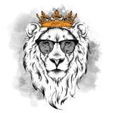 Cabeça de desenho étnica da mão da coroa vestindo do leão e nos vidros Pode ser usado para a cópia, cartazes, t-shirt Vetor Illus ilustração royalty free
