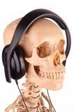 Cabeça de esqueleto com fones de ouvido sobre fotos de stock royalty free