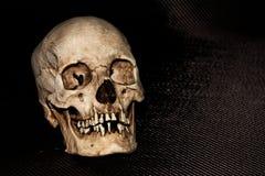 Cabeça de esqueleto humana do crânio no preto Fotografia de Stock