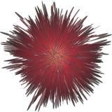 Cabeça de flor Imagens de Stock Royalty Free