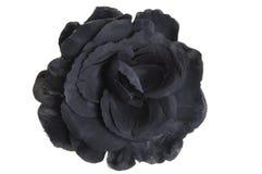 A cabeça de flor preta aumentou fotos de stock royalty free