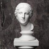 Cabeça de mármore branca da jovem mulher fotos de stock