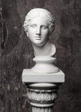 Cabeça de mármore branca da jovem mulher fotos de stock royalty free