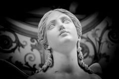 Cabeça de mármore branca da jovem mulher Fotografia de Stock