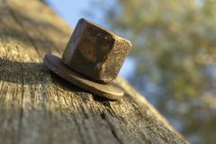 Cabeça de parafuso com a arruela na superfície de madeira fotografia de stock royalty free