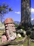 Cabeça de pedra de Copan Foto de Stock Royalty Free