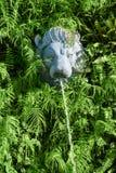 Cabeça de pedra do leão com a fonte em plantas verdes Foto de Stock Royalty Free