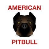 Cabeça de Pitbull ilustração stock