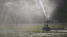 Cabeça de sistema de extinção de incêndios que molha a grama no campo de esporte video estoque