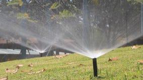 Cabeça de sistema de extinção de incêndios que molha a grama no parque vídeos de arquivo