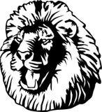 Cabeça de um leão Imagem de Stock