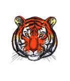 A cabeça de um tigre Foto de Stock Royalty Free